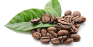 Why-coffee-is-best-friend-of-your-skin